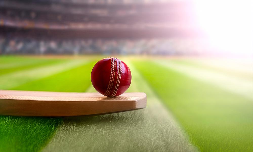 cricket video games